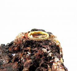 Argola em Aço PVD GOLD CRAVEJADA ZIRCONIA Clicker 1.2mm
